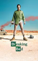 Breaking bad. saison 1 / série télévisée de Vince Gilligan, Jim McKa et Adam Bernstein | Gilligan, Vince. Antécédent bibliographique
